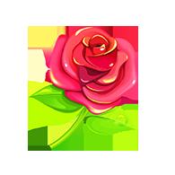 玫瑰999